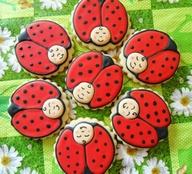 doces joaninhas